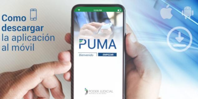 PJRN Puma: cómo bajar la aplicación móvil